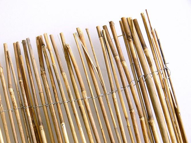 Rákosová rohož – Reedcane Lite 2x5m